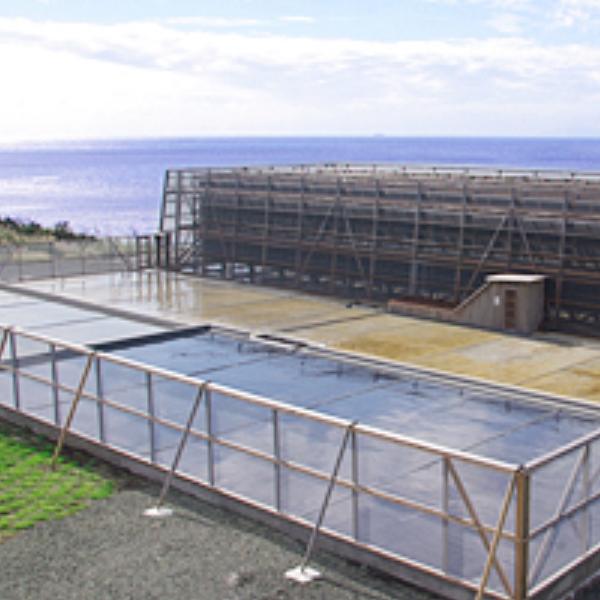 Oshima Island Yaki Shio